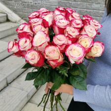 Роза Свитнес 50 см