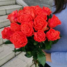 Роза Оранж Краш 50 см