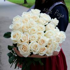"Роза ""Вендела"" 60 см"