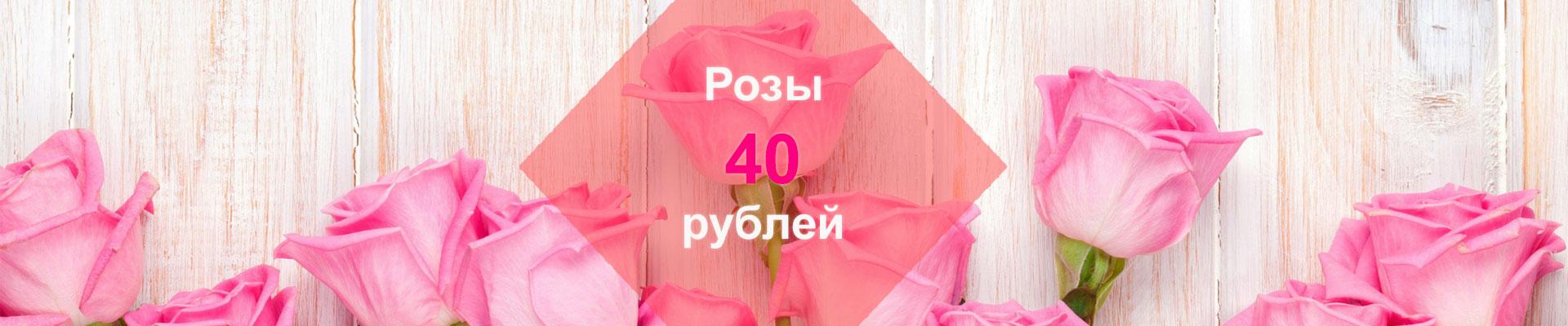 Розы 40
