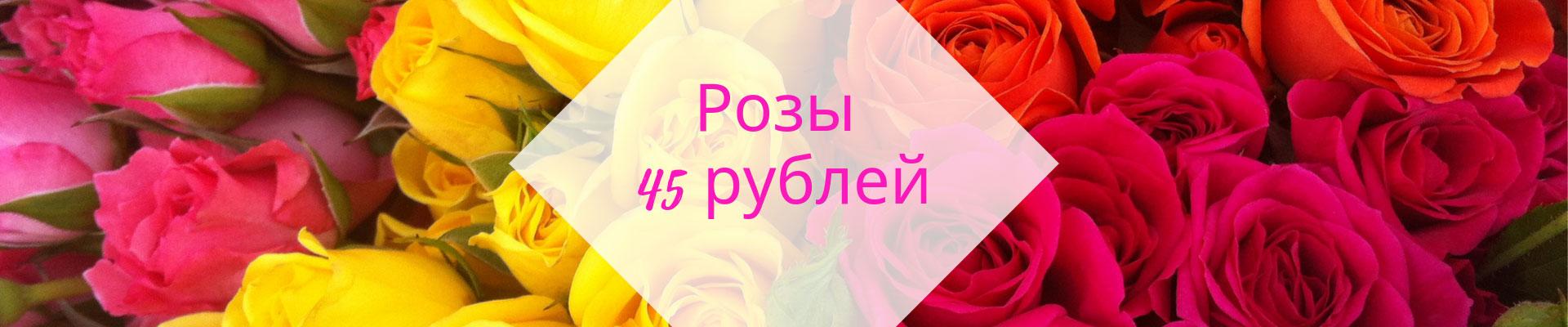 Розы 45