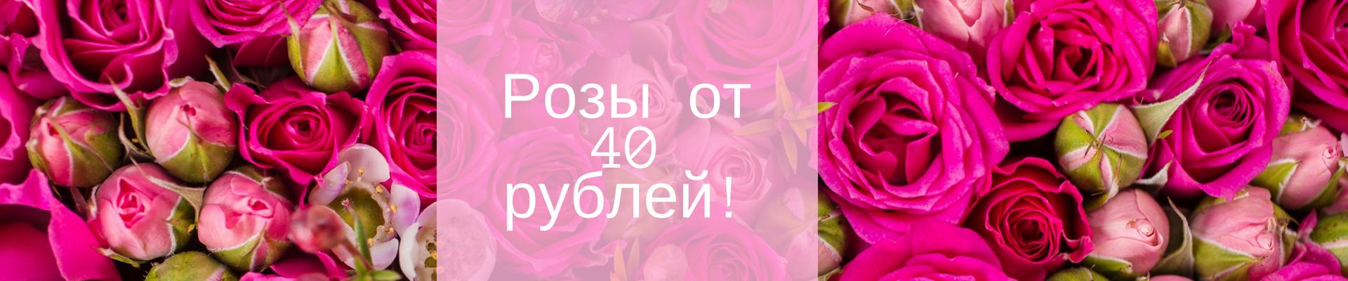 Роза 40 рублей
