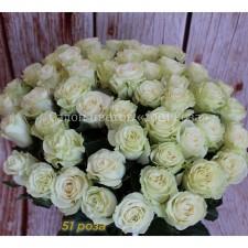 """Роза """"Мондиаль"""" 60 см"""