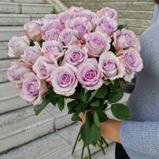 Роза Океан 50 см