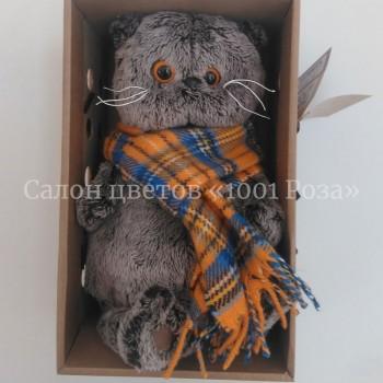 Кот Басик в шарфе