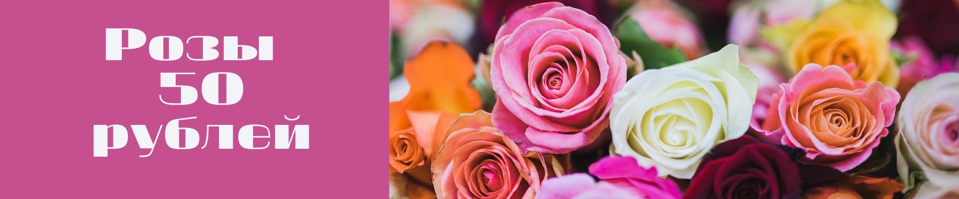 Розы 50